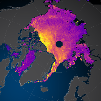 Sea Ice Radar Altimetry